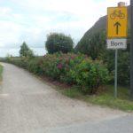 Der Radweg von Wieck nach Born führt zum Teil am Bodden entlang